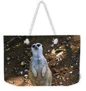 Meerkat Poising Weekender Tote Bag