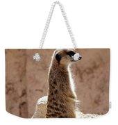 Meerkat Standing On Rock And Watching Weekender Tote Bag