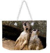 Meerkats Keeping An Eye Out Part 2 Weekender Tote Bag