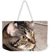 Melvin The Wondercat Weekender Tote Bag