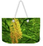 Mesquite Bloom Weekender Tote Bag by Scott Cordell