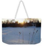 Milkweed In February At Sunrise Weekender Tote Bag