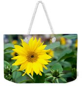 Mini Sunflower And Bud Weekender Tote Bag