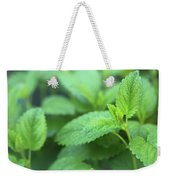 Mint Mood Weekender Tote Bag
