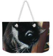 Kitty Chair Weekender Tote Bag