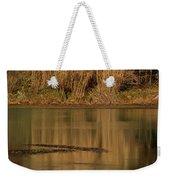 Mirror Spring 2 Weekender Tote Bag