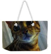Mischievous Bengal Cat Weekender Tote Bag
