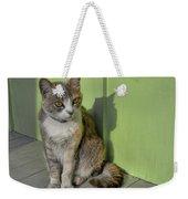 Miss Esmeralda Weekender Tote Bag