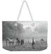 Misty Morning Horses Weekender Tote Bag