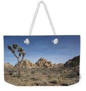 Mohave Desert Weekender Tote Bag