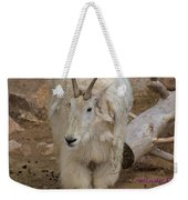 Molting Mountain Goat Weekender Tote Bag