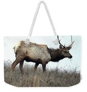 Molting Tomales Bay Elk Weekender Tote Bag