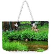 Mom And Baby Deer Weekender Tote Bag