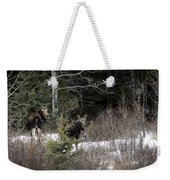 Mom And Calf  In The Forest Weekender Tote Bag