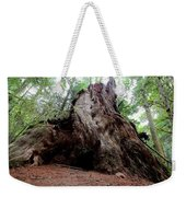 Moments In Time Trail Weekender Tote Bag
