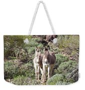 Mommy And Baby Burro Weekender Tote Bag