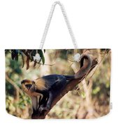 Mona Monkey In A Tree Weekender Tote Bag
