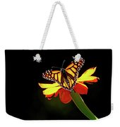 Monarch And Tithonia Light And Shadow Weekender Tote Bag