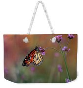 Monarch Butterfly In Autumn 2011 Weekender Tote Bag