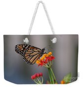 Monarch Butterfly On Milkweed Weekender Tote Bag