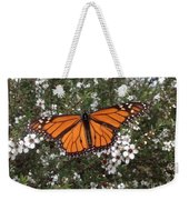 Monarch Butterfly On New Zealand Teatree Bush Weekender Tote Bag