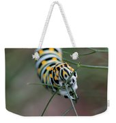 Monarch Caterpillar Clutches Dill In Pincers, Macro Weekender Tote Bag