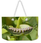 Monarch Caterpillar Weekender Tote Bag