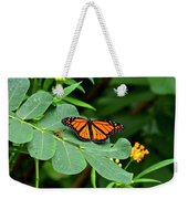 Monarch Butterfly Resting On Cassia Tree Leaf Weekender Tote Bag