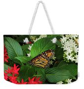 Monarch Framed Weekender Tote Bag