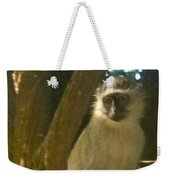 Monkey In The Tree Weekender Tote Bag