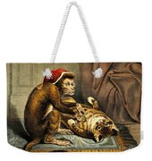 Monkey Physician Examining Cat For Fleas Weekender Tote Bag