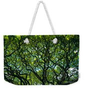 Monkeypod Canopy Weekender Tote Bag
