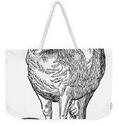 Monster, 16th Century Weekender Tote Bag