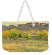 Montana Cottonwood Reverie Weekender Tote Bag by Cris Fulton