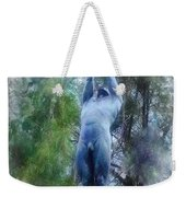Monument To Francisco Ferrer Y Guardia Weekender Tote Bag