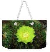 Moon Cactus Weekender Tote Bag