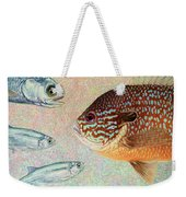 Mooneyes, Sunfish Weekender Tote Bag