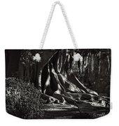Moonlight In The Park - Valencia Weekender Tote Bag