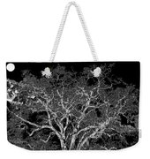 Moonlit Night Weekender Tote Bag