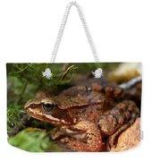 Moor Frog In September  Weekender Tote Bag