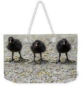 Moorhen Chicks Weekender Tote Bag