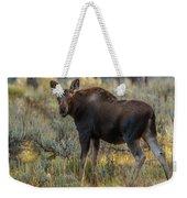 Moose Calf In Fall Colors Weekender Tote Bag