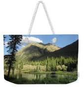 Moose In The Elk Creek Beaver Ponds Weekender Tote Bag