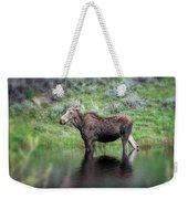 Moose Yellowstone Np_grk6918_05222018 Weekender Tote Bag