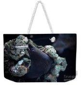 Moray Eel Eating Little Fish Weekender Tote Bag