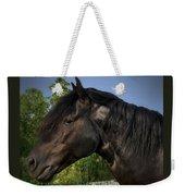 Morgan Horse Weekender Tote Bag