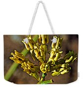 Mormon Tea On Tahquitz Canyon Way In Palm Springs-california Weekender Tote Bag