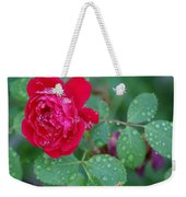Morning Dew On A Rose Weekender Tote Bag