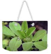 Dewdrops On Leaves Weekender Tote Bag