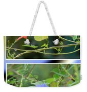 Morning Glories And Butterfly Weekender Tote Bag